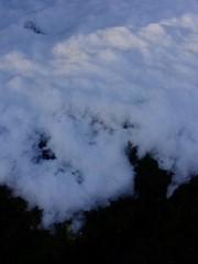 古郡ひろみ 公式ブログ/雪! 画像1