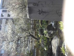 辻三太郎 公式ブログ/2014-03-01 18:44:48 画像1