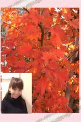 ここあ(プチ☆レディー) 公式ブログ/キレイな色☆☆女性マジシャンここあプチ☆レディーマジック 画像1
