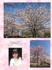 ここあ(プチ☆レディー) 公式ブログ/☆プロの力を借りる☆女性マジシャンここあプチ☆レディーマジック 画像1