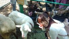 ここあ(プチ☆レディー) 公式ブログ/動物とプチ☆レディー♪女性マジシャンここあ画像 画像1