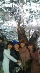 ここあ(プチ☆レディー) 公式ブログ/花見 名所の千鳥ヶ淵へ☆ 画像2