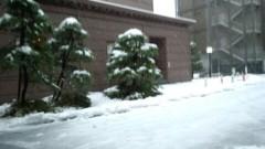 ここあ(プチ☆レディー) 公式ブログ/雪の中、行ってきました(^_-)-☆ 画像1