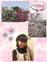 ここあ(プチ☆レディー) 公式ブログ/☆ワンプレートクッキング☆女性マジシャンここあプチ☆レディーマジック 画像1