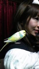 ここあ(プチ☆レディー) 公式ブログ/ドアップ!?かなぁ(*^.^*) 画像1