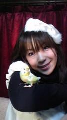 ここあ(プチ☆レディー) 公式ブログ/ドアップ!?かなぁ(*^.^*) 画像3