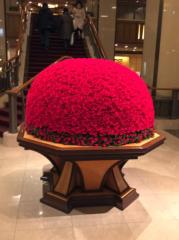 ここあ(プチ☆レディー) 公式ブログ/帝国ホテルにて☆☆女性マジシャンここあプチ☆レディーマジック 画像2