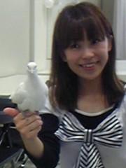 ここあ(プチ☆レディー) 公式ブログ/ハトさんの名前☆★ 画像1