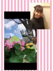 ここあ(プチ☆レディー) 公式ブログ/☆余裕を持つこと☆女性マジシャンここあプチ☆レディーマジック 画像1