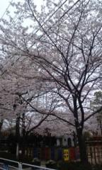 標永久 公式ブログ/曇り 画像1