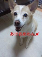 華彩なな 公式ブログ/ななちin横浜( ・∀・) 画像1