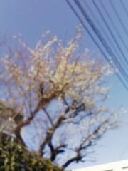 榎本くるみ 公式ブログ/春 画像1