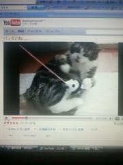 榎本くるみ 公式ブログ/パンダとねこ 画像1