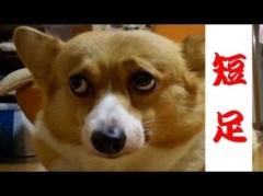 原清春 公式ブログ/お腹が 画像1