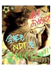 Noa 公式ブログ/あけおめー 画像1