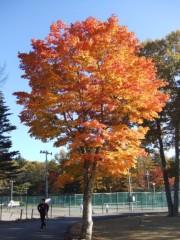 イリア 公式ブログ/軽井沢から 画像1