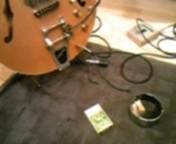 ジルバ 公式ブログ/へんみギターは、 画像1