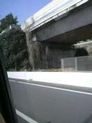 ジルバ 公式ブログ/はい、名古屋へ。 画像1