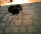 ジルバ 公式ブログ/魔法の絨毯。 画像1