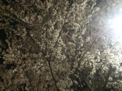 蜂谷由貴 公式ブログ/春! 画像2