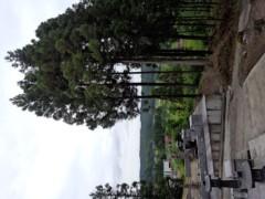蜂谷由貴 公式ブログ/お墓参り 画像1