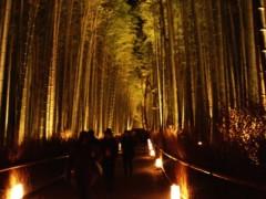 蜂谷由貴 公式ブログ/そうだ、京都に行こう! 画像3