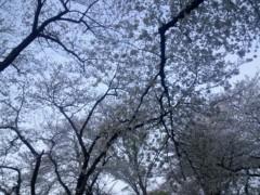 蜂谷由貴 公式ブログ/ひえひえ 画像1
