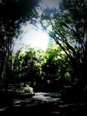 柏谷菜々子 公式ブログ/自然 画像2