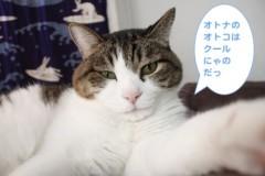 さとうゆみ 公式ブログ/黒猫兄妹 画像1