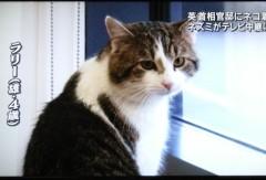 さとうゆみ 公式ブログ/みーくん今昔 画像1