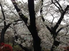 さとうゆみ 公式ブログ/もうすぐ新年度 画像2