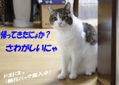 さとうゆみ 公式ブログ/帰宅 画像1