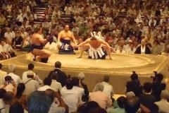 さとうゆみ 公式ブログ/大相撲観戦 画像1