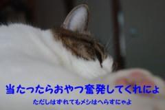 さとうゆみ 公式ブログ/小芝居 画像3