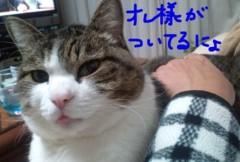 さとうゆみ 公式ブログ/流行ものに・・・ 画像2