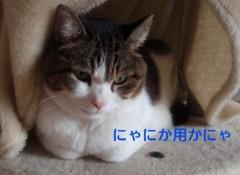 さとうゆみ 公式ブログ/秋の夜長 画像2