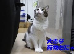 さとうゆみ 公式ブログ/帰宅 画像2