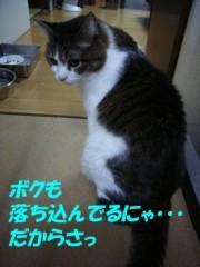 さとうゆみ 公式ブログ/ごめんにぇ。 画像2