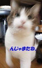 さとうゆみ 公式ブログ/あだな 画像2