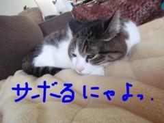 さとうゆみ 公式ブログ/男の背中 画像3