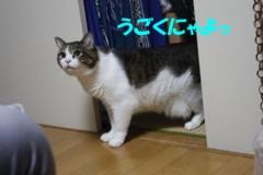 さとうゆみ 公式ブログ/迷ホスト 画像3