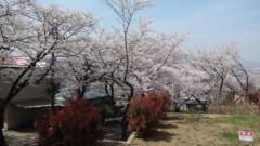 さとうゆみ 公式ブログ/さりげなくお花見 画像2