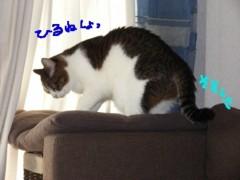 さとうゆみ 公式ブログ/新品のブーツ 画像3