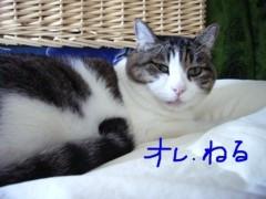 さとうゆみ 公式ブログ/若返り? 画像3