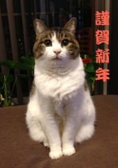さとうゆみ 公式ブログ/明けましておめでとうございます(^^) 画像1