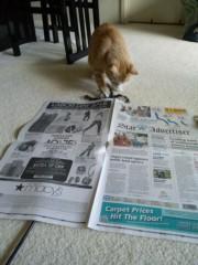さとうゆみ 公式ブログ/正しい新聞の使い方 画像1