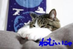 さとうゆみ 公式ブログ/春ネイル 画像3