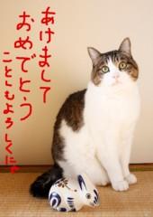 さとうゆみ 公式ブログ/新年あけましておめでとうございます 画像3