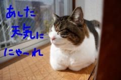 さとうゆみ 公式ブログ/答え 画像3