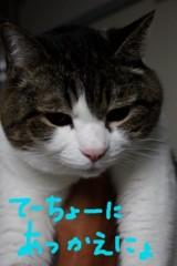 さとうゆみ 公式ブログ/明日から前橋 画像3